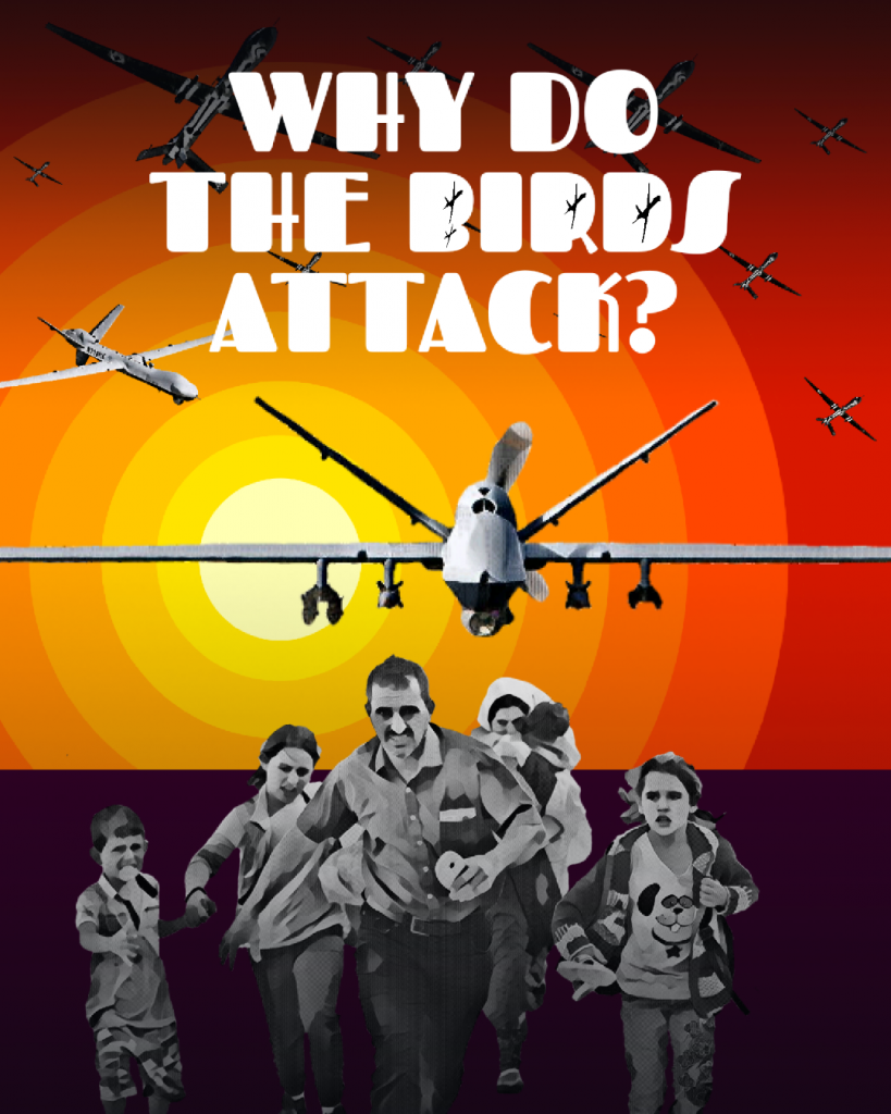 Why do the birds attack?